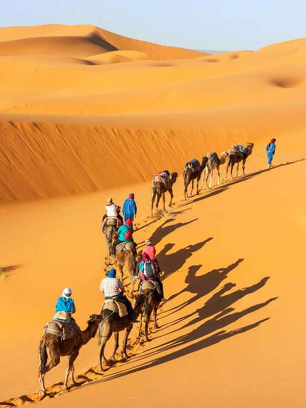 8 Days Tour From Casablanca To Marrakech Via Merzouga Desert‎‎
